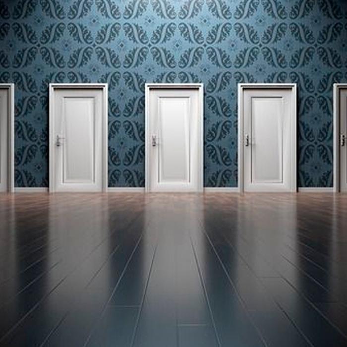Tipos de decoración de interiores y selección de puertas